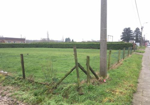 Bouwland te Wichelen / Bruinbeke