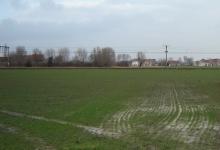 Lissewege, 41a79ca landbouwgrond te koop, pachtvrij