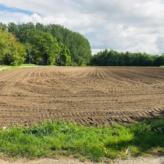 Te Koop: Landbouwgrond 95 a 40 ca te Rotselaar (Wezemaal). Vrij van huur en pacht.