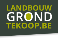 Landbouwgronden te koop in Achel en Overpelt