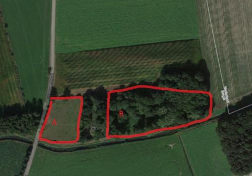Bos archieven landbouwgrond te kooplandbouwgrond te koop for Recreatiegrond te koop oost vlaanderen