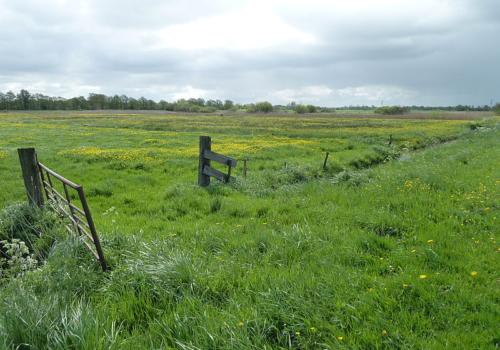 Twee percelen landbouwgrond te Sijsele